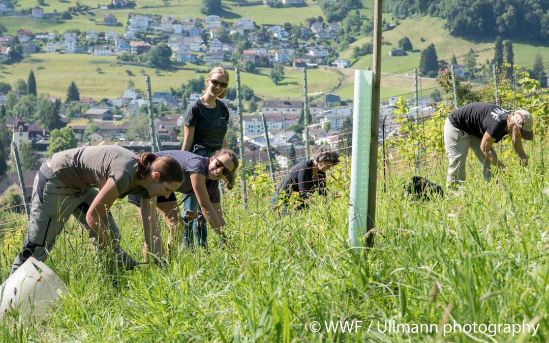 Gelungener Natureinsatz mit dem WWF