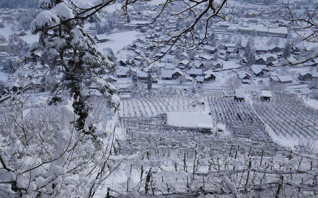 Thal versinkt im Schnee